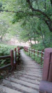 hiking 12