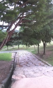 M Tombs 11